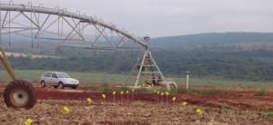 Planejamento do uso e ocupação do solo